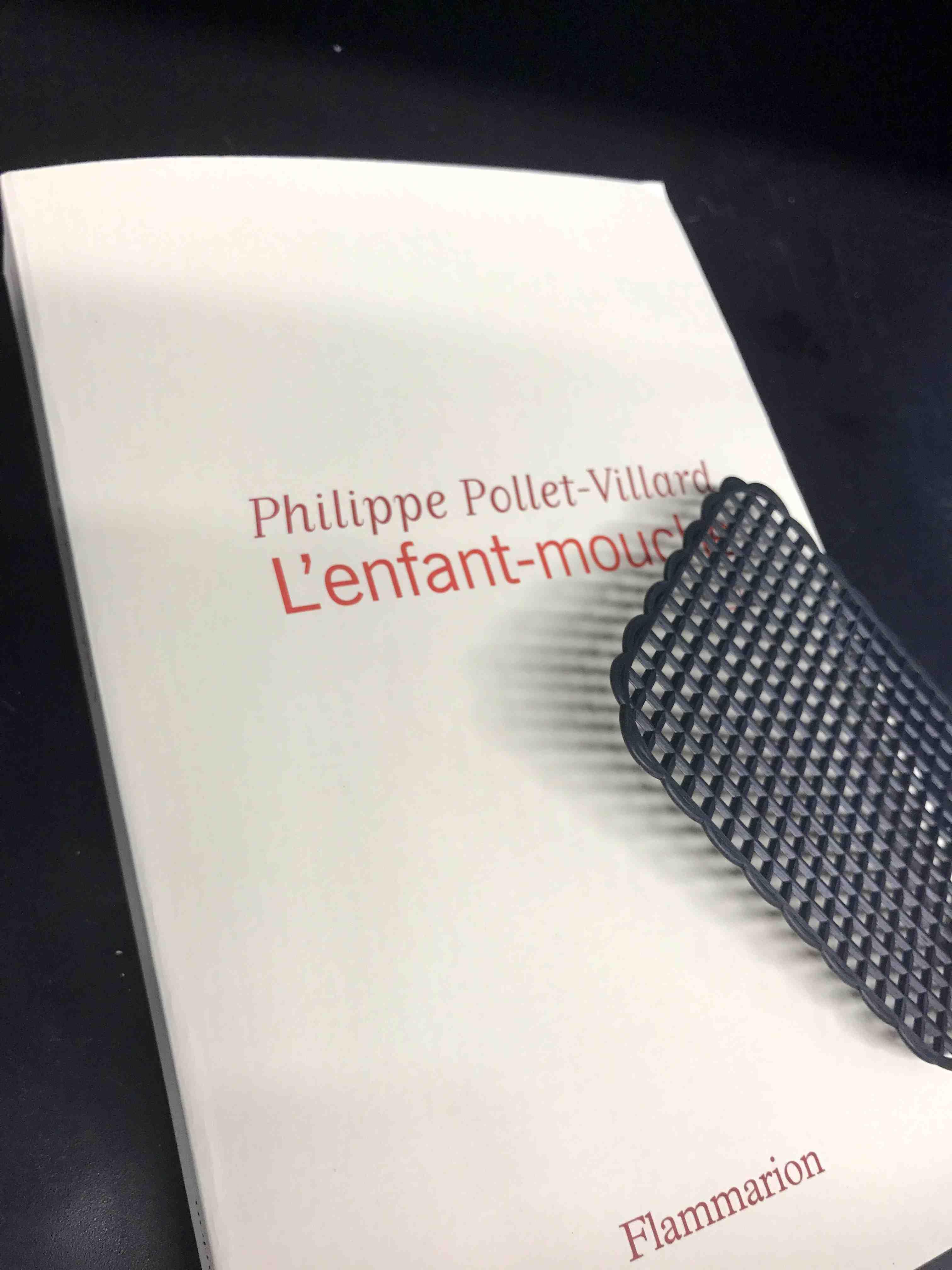 P. Pollet-Villard